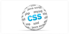 CSS Customization