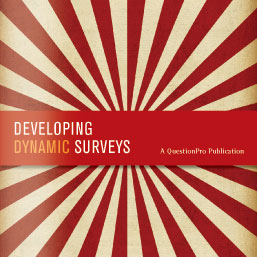 Developing Dynamic Surveys